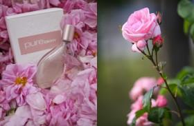 DKNY Pure A Drop of Rose pre ženy